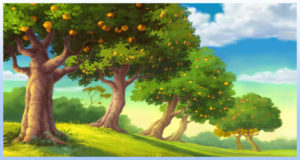 Image_Landscape